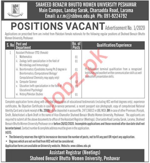 Shaheed Benazir Bhutto Women University Peshawar Jobs 2020
