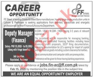 Deputy manager Finance Jobs in FF Steel