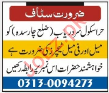 Hira School Jobs 2020 For Teaching Staff in Charsadda KPK