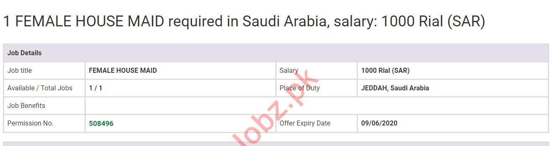 House Maid Job 2020 For Jeddah Saudi Arabia