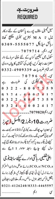 Jang Sunday 16th February Miscellaneous Staff Jobs 2020