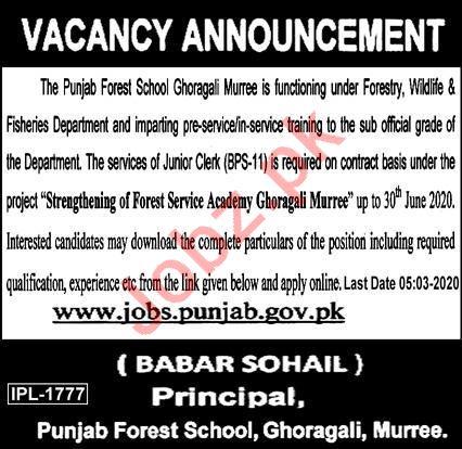 Punjab Forest School Ghoragali Clerk Jobs 2020