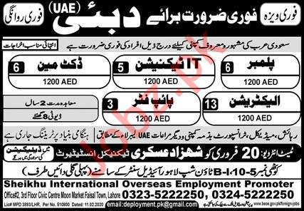 Tewchnical Staff Jobs in Dubai UAE