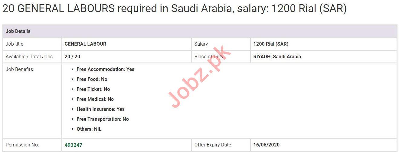 General Labour Jobs in Riyadh Saudi Arabia