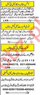 Daily Khabrain Management Staff Jobs 2020 in Lahore.