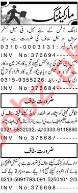 Daily Aaj Sales Staff Jobs 2020 in Peshawar