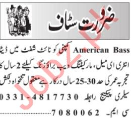 Americal Based Company IT Staff Jobs 2020 in Lahore