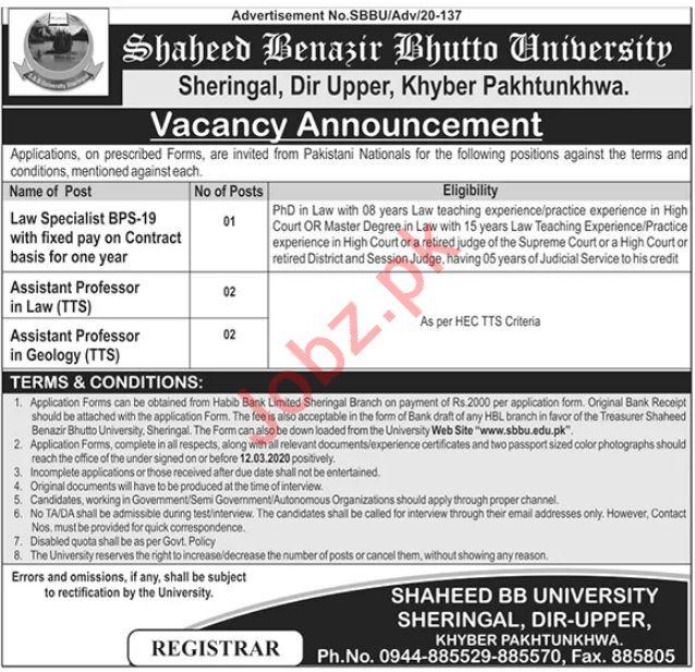 Shaheed Benazir Bhutto University Jobs 2020 in Upper Dir KPK