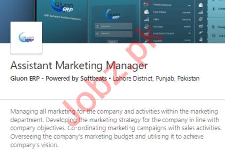 Gluon ERP Softbeats Lahore Jobs 2020 Asst Marketing Manager