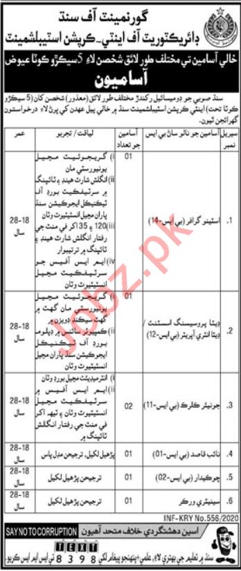 Directorate of Anti Corruption Establishment Jobs 2020