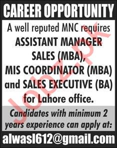 MIS Coordinator & Sales Staff Jobs 2020 in Lahore