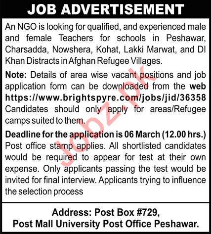 Non Governmental Organization NGO Jobs 2020