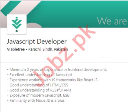 Viabletree Karachi Jobs 2020 for Javascript Developer