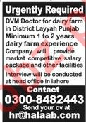 Dairy Farm Jobs 2020 in Layyah