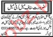 Daily Khabrain Newspaper Classified Jobs 2020 In Multan