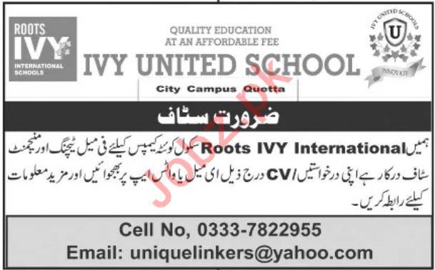 Roots IVY United School Teaching & Non Teaching Staff Jobs