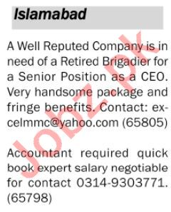 Chief Executive Officer CEO & Accou Jobs in Private Company