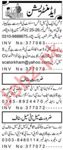 Administration Staff Jobs 2020 in Peshawar
