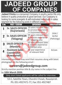 Jadeed Chicks Company Sales Staff Jobs 2020