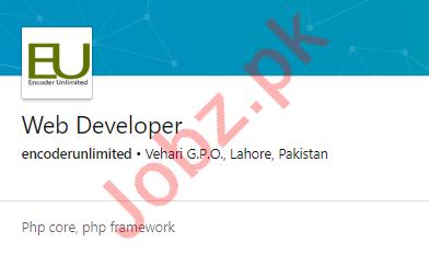 Encoders Unlimited Lahore Jobs 2020 for Web Developer