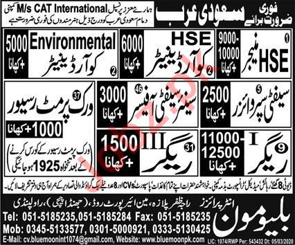 CAT International Company Jobs 2020 in Dammam Saudi Arabia
