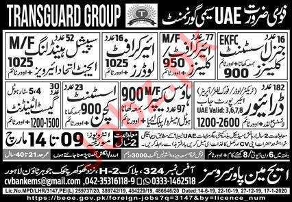 Transguard Group Technical Staff jobs 2020 for UAE