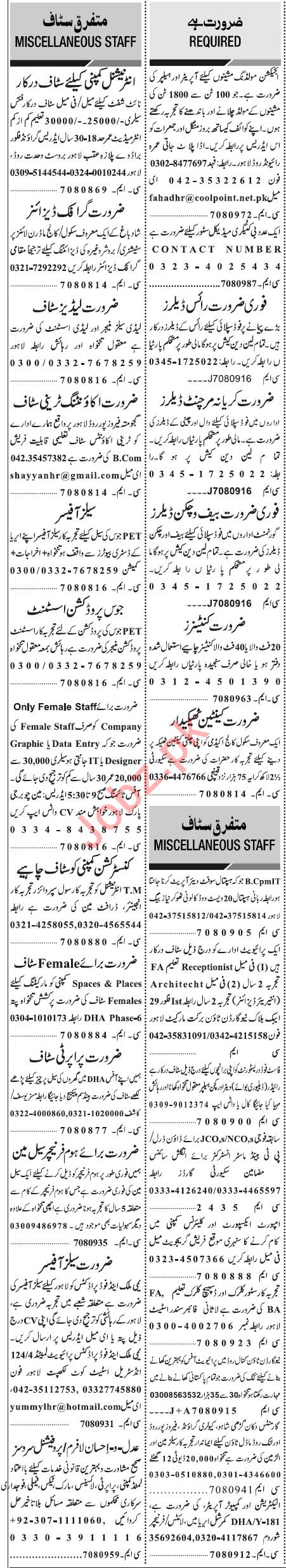 Jang Sunday Classified Ads 8th March 2020 for General Staff