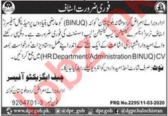 Balochistan Institute of Nephro Urology Quetta BINUQ Jobs