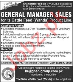 General Manager Sales Job 2020 in Faisalabad