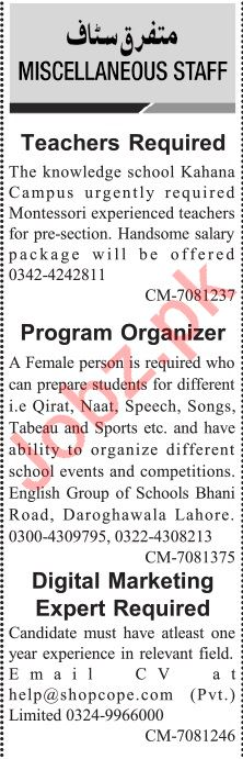 Jang Sunday Classified Ads 15th March 2020 for General Staff