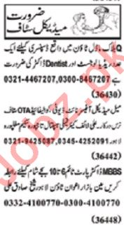 Nawaiwaqt Sunday Classified Ads 15th March 2020 for Medical