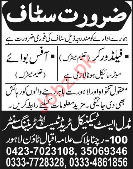 Field Workers & Office Boy Jobs 2020 in Lahore