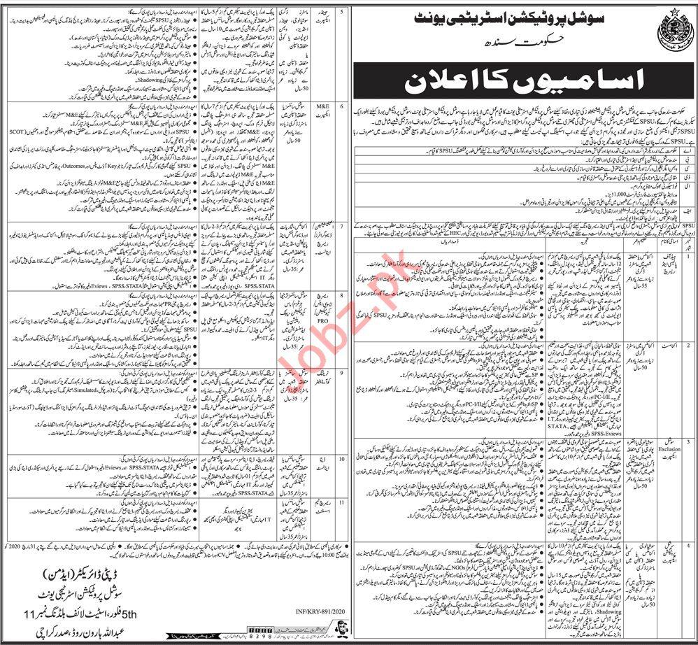Social Protection Strategy Unit Jobs 2020 in Karachi