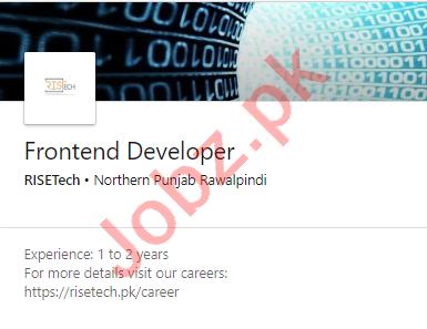 RISETech Rawalpindi Jobs 2020 for Frontend Developer