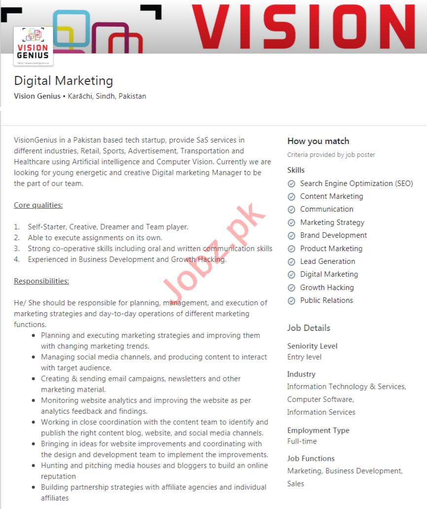 Vision Genius Karachi Jobs 2020 Digital Marketing Officer