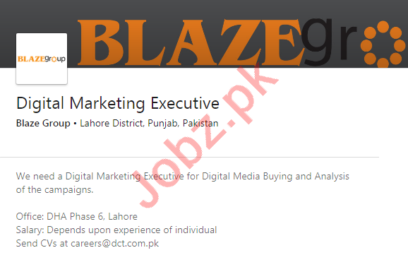 Blaze Group Lahore Jobs 2020 for Digital Marketing Executive
