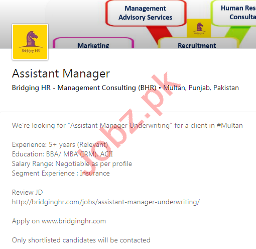 Bridging HR Multan Jobs 2020 for Assistant Manager