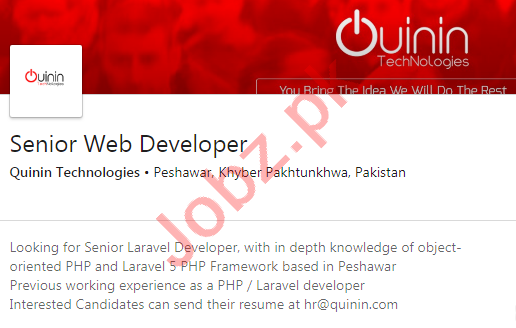Quinin Technologies Peshawar Jobs 2020 for Web Developer