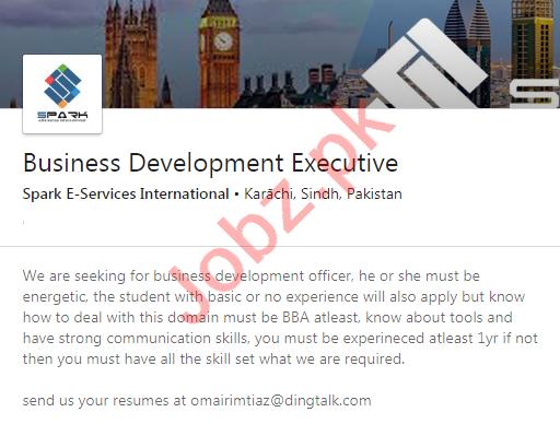 Spark E Services International Karachi Jobs 2020