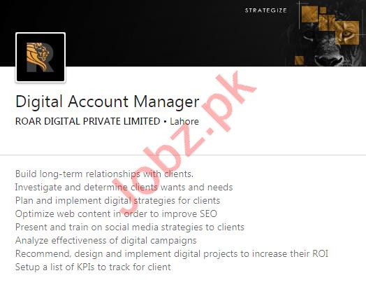 Roar Digital Lahore Jobs 2020 for Digital Account Manager