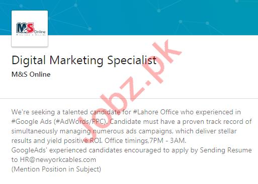 M&S Online Services Lahore Jobs Digital Marketing Specialist