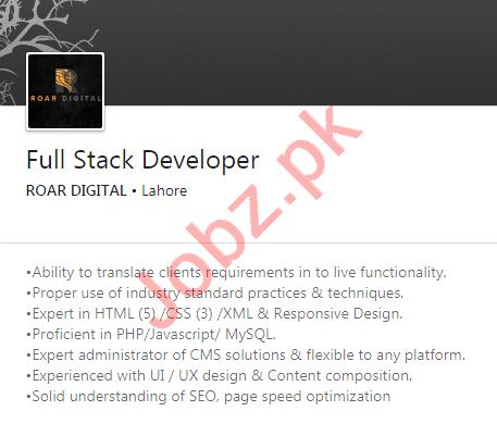 Roar Digital Lahore Jobs 2020 for Full Stack Developer