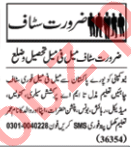 Data Entry Operator & Assistant Manager Jobs 2020