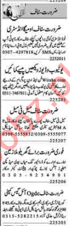 Admin Officer & Security Guard Jobs 2020