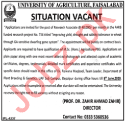 University of Agriculture Faisalabad UAF Jobs 2020