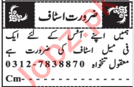 Female Office Staff Jobs 2020 in Quetta