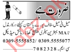Male & Female Staff Jobs Career Opportunity 2020