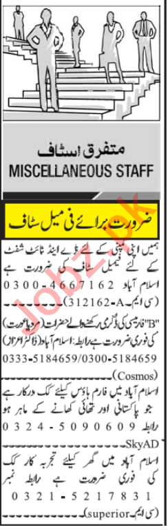Pharmacist & Cook Jobs 2020 in Islamabad