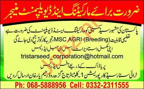 Marketing & Development Manager Jobs 2020 Rahim Yar Khan