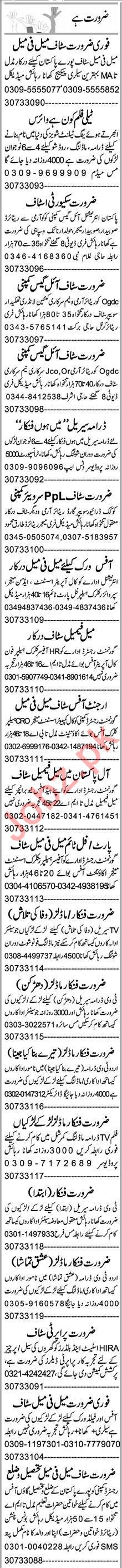 Web Developer & Assistant Supervisor Jobs 2020 in Lahore